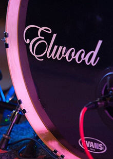 Elwood, The Declaration Band, The New Shmoo